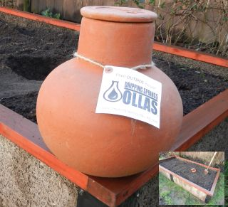 OLLA-Irrigation-Pot