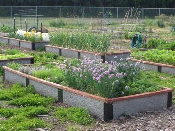 Long 12 foot raised garden bed