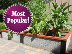 Popular 8 foot raised garden bed