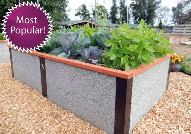4x8x2 tall rectangle raised bed garden kit - Garden Bed