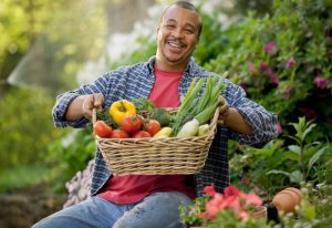 great vegatble harvest start with durable greenbed raised garden beds
