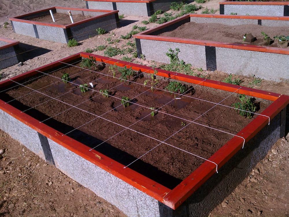 Sq Ft Gardening