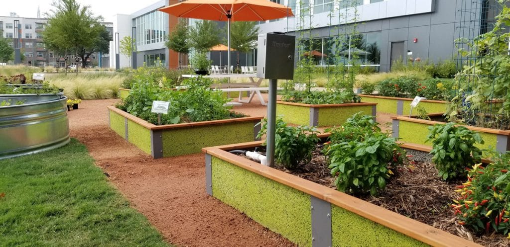 Culinary Raised Garden Urban Dirt Garden