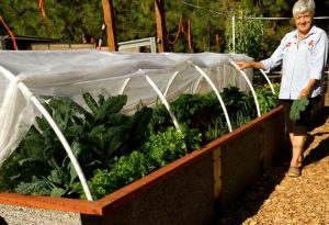 Durable Raised Garden Bed Kit